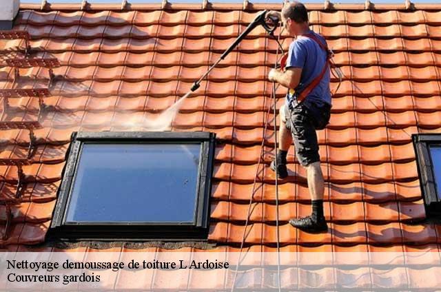Nettoyage et demoussage toiture L Ardoise tél: 04.82.29.44.58